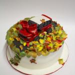 madalina torte pasta di zucchero-29