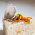 Risotto fiori di zucca e patate viola