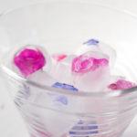 Ghiaccio con fiori - Madalina Pometescu - Ricette dolci e salate.jpgIMG_6935